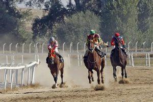 Mahmudiye Mahalli At Yarışları