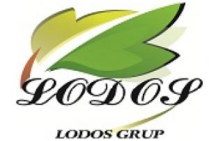 Lodos Grup
